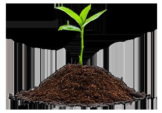 Товары для сельского хозяйства и посадочные культуры